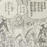 【ワンピース】896話「最後のお願い」ネタバレ確定感想&考察!