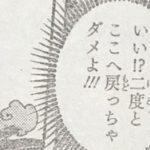 【ワンピース】レイジュ=母親ソラのクローン説についての考察、誰よりも優しい母の遺伝子!