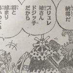 【ワンピース】囚われの妹・ブリュレの掴まり遍歴について今振り返る!
