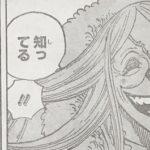 【ワンピース】ブリュレが案外キング・オブ・妹だった件について&可愛い幼少期のこと!
