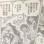 【ワンピース】大入道の罪滅ぼし、タイヨウの海賊団の覚悟と決意について!