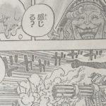 【ワンピース】カルメルへ送る甘み&魂の重さと悪魔の実について!