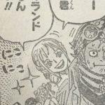 【ワンピース】コビー&レベッカ(コビレベ)の組み合わせについて思う事!