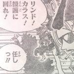 【ワンピース】革命軍軍隊長たちの戦闘戦術、軍を動かし戦わせる力について!