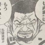 【ワンピース】七武海制度完全徹後の世界、特にバギーの身の振り方が気になってる件について!