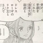 【ワンピース】藤虎からの手紙、リク王&コブラとの三者会談について!