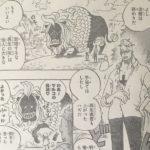 【ワンピース】909話「切腹」ネタバレ確定感想&考察![→910話]