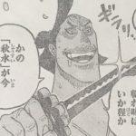 【ワンピース】悪代官と帯回し、ある意味ロビンの魅せ場かも?的な話!