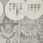 【ワンピース】ワノ国編・エースの足跡とお玉ちゃんの思い出について!