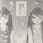 【鬼滅の刃】第118話「無一郎の無」ネタバレ確定感想&考察![→119話]