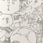 【ワンピース】上陸時にはぐれたみんなはドコ行った?特にチョッパー&ブルックの安否について!