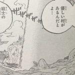 【ワンピース】滝の裏の「優しい村」と白ひげ&エースの墓、桜咲くあの場所について!