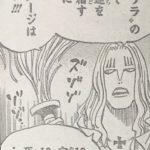 【ワンピース】魂を司る能力として見る「ワラワラの実」のカラクリについて!
