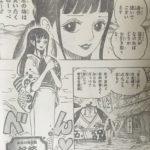 【ワンピース】「お菊ちゃん=妖艶なくのいち説」の補強&小さな恋とエースの子供について考えてみたい!