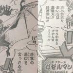 【ワンピース】ホールデム様&バットマン・ガゼルマンについてのこと!