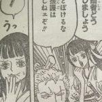 【ワンピース】お菊ちゃんのチョット不思議な人物像、天然入ってる系女子かもね!