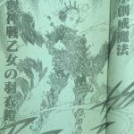 【ブラッククローバー】ヴァルキリードレス&水の暴走、ノエルの成長が垣間見え得た件について!