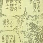 【ワンピース】錦えもん&お鶴さん夫婦のこと、互いの心情に寄り添うと面白い!