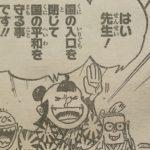 【ワンピース】教育の操作・偏りについて&赤ざや九人男のこと!