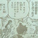 【ワンピース】モモの助の狐火流&サンジたちの海底冒険について思うこと!