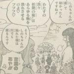 【ワンピース】しのぶのジュクジュクの実(仮)に強すぎる疑惑が生じた件について!