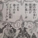 【ワンピース】武具・兵器の取引先、ティーチ&カイドウ双方のメリットについて!