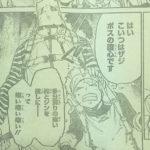 【ワンピース】ザジはラムダ系農園の戦闘特化個体?アダムとの共通点!