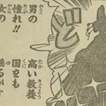 【ワンピース】小紫の正体はトキトキの実を継承した日和様かな?…みたいな話!