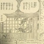 【ワンピース】八本首が否定する「黒ひげ=ケルベロス説」について!