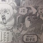 【ワンピース】しのぶは先端恐怖症、良いトコ&悪いトコじっくり観察!