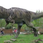 【ワンピース】飛び六砲は恐竜軍団?候補に上がる恐竜の願望!