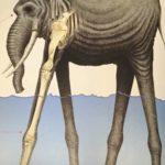 【判明】ナイタミエ・ノリダ象についての詳細、海王類の近縁かな?[考察]