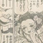 【ワンピース】ハニートラップ暗殺計画、あと宴会参加の芸者について!