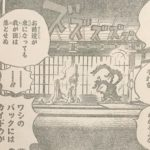 【ワンピース】黒炭オロチ=能力8個持ち説、雑魚のくせにチート的なアレ!