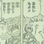 【ワンピース】幻獣種・獏(ばく)の能力者仮説、何かやっただろえびす町に!