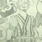 仮説修正・レイドスーツに対するサンジの向き合い方と新たなる解釈![考察]