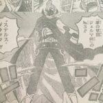 ステルスブラック(おそばマスク)に変身したサンジ、その能力について![考察]