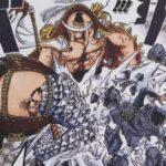 【ビブルカード】ダイヤモンド・ジョズの金剛の盾&超パワーについて![考察]