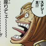 【ビブルカード】ステリーの人物像考察、鈍感の才を持つ国王![考察]