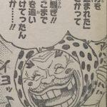 【ワンピース】936話・937話に繋がる謎と伏線、ヤスが悪者に見えてきた件![考察]