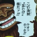 【ビブルカード】チャドロス・ヒゲリゲス(茶ひげ)考察、純朴なる巨漢海賊![考察]
