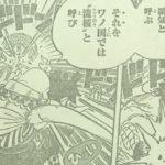 【ワンピース】941話流桜×サボとのコラボ期待×待ち構える未来について![→942話]