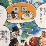 【ビブルカード】デンさん考察、魚人島の船大工!