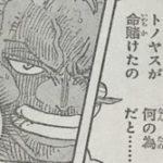 【ワンピース】冷静さを失ったゾロ、まさか日和の影響じゃないよね?