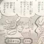 【ワンピース】スマートタニシ(スマシ)は電伝虫の劣化版?トランシーバー的な雰囲気!
