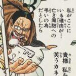 【ビブルカード】ギャルディーノ(Mr3)考察、姑息だけど強い!