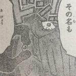 【ワンピース】疫災弾ミイラ考察、人間兵器を生み出す疫災!