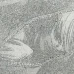 【ヒロアカ】ホークスがジーニストにやらかしたこと、バッグの中に詰められたモノ!