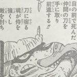 【ワンピース】侍が侍である理由、刀に秘められた真の効果!