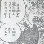 【ワンピース】キングの種族は何?歴史の彼方に消えた謎!